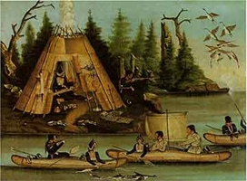 The Newfoundland Expedition